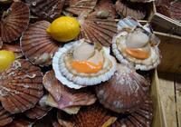 Сколько варить морские гребешки