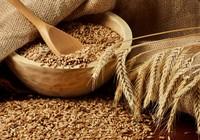 Сколько варить пшеничную кашу