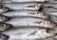 Сколько варить рыбу путассу